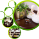 Ayurveda Treatment in Kochi